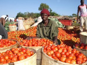 Mozambique on the move - Tomato Market of Madeia